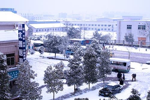 snow_6.jpg